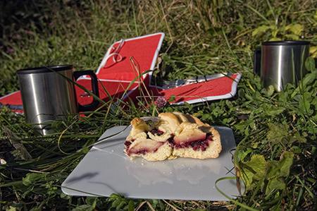 stgaller-picknick